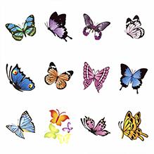 Ваденки Пеперуди